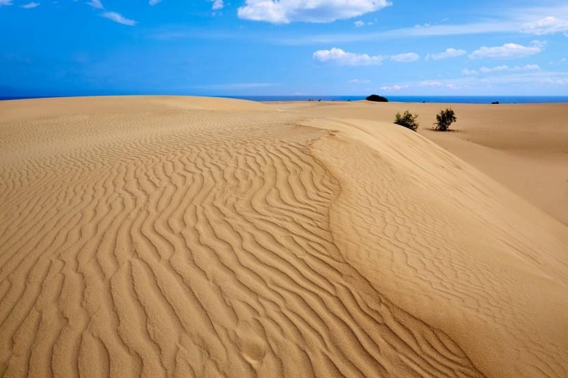 Piesočné duny Corralejo