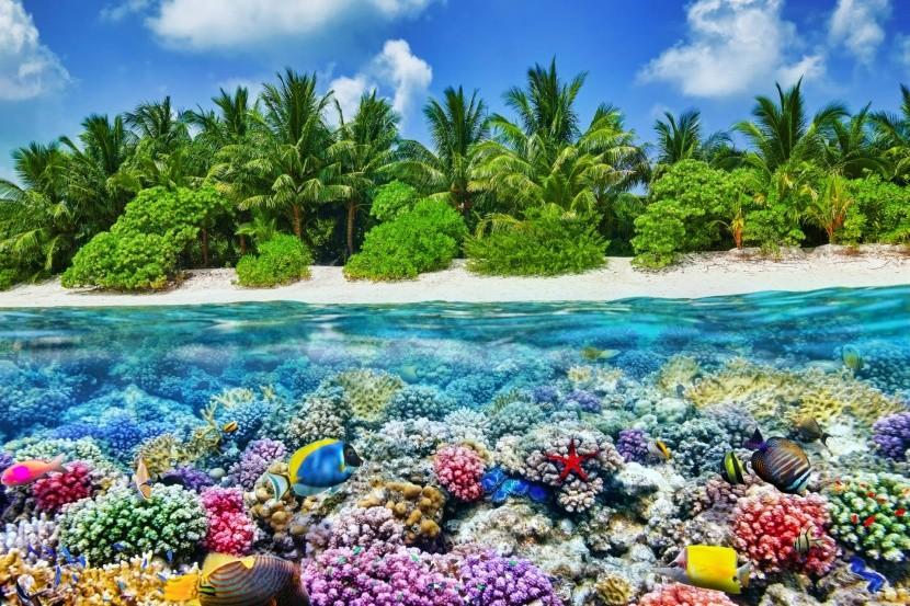 Ostrov Thoddoo
