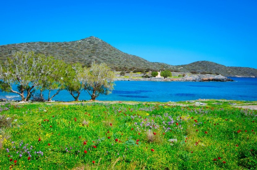 Príroda v okolí Eloundy