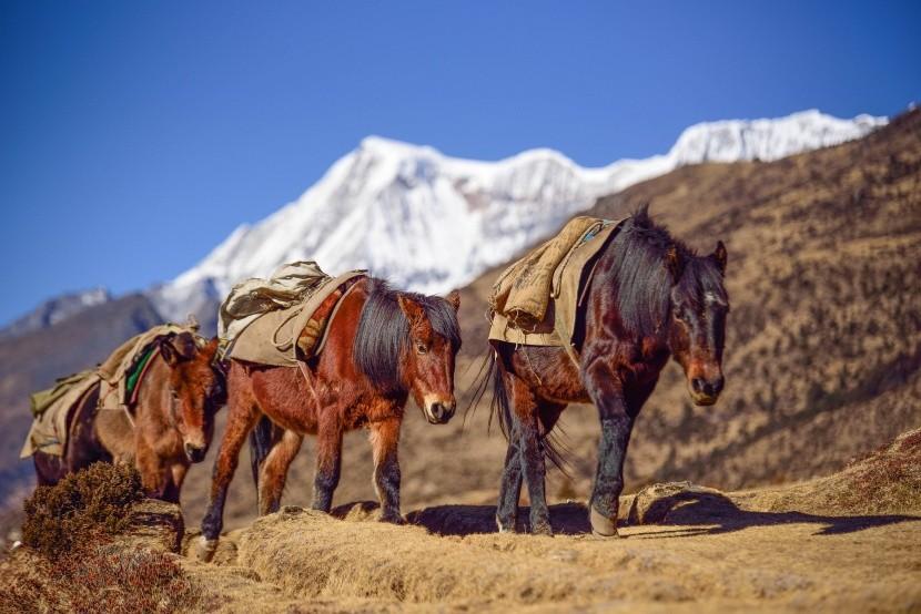 Trek v Bhutáne