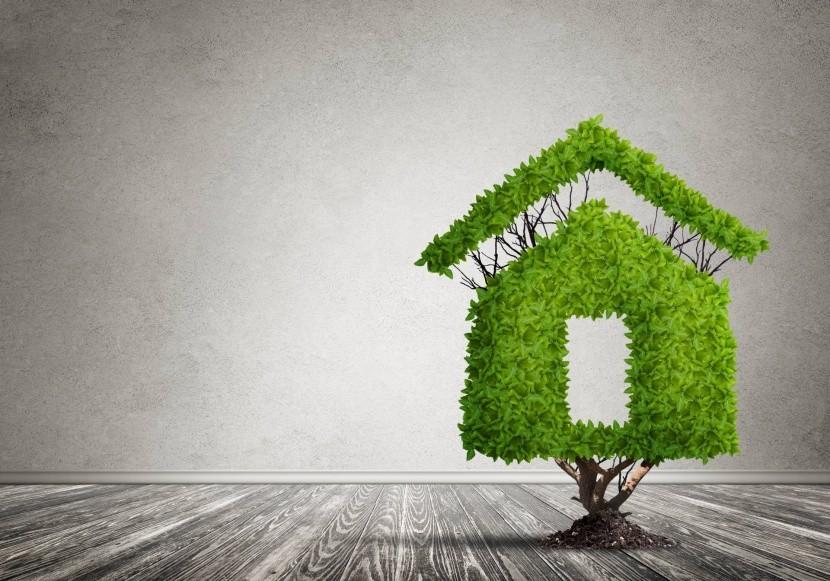 Eco-friendly hotely