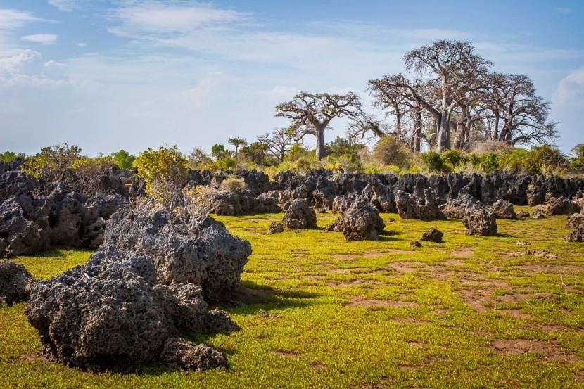 Ostrov Wasini a koralová záhrada