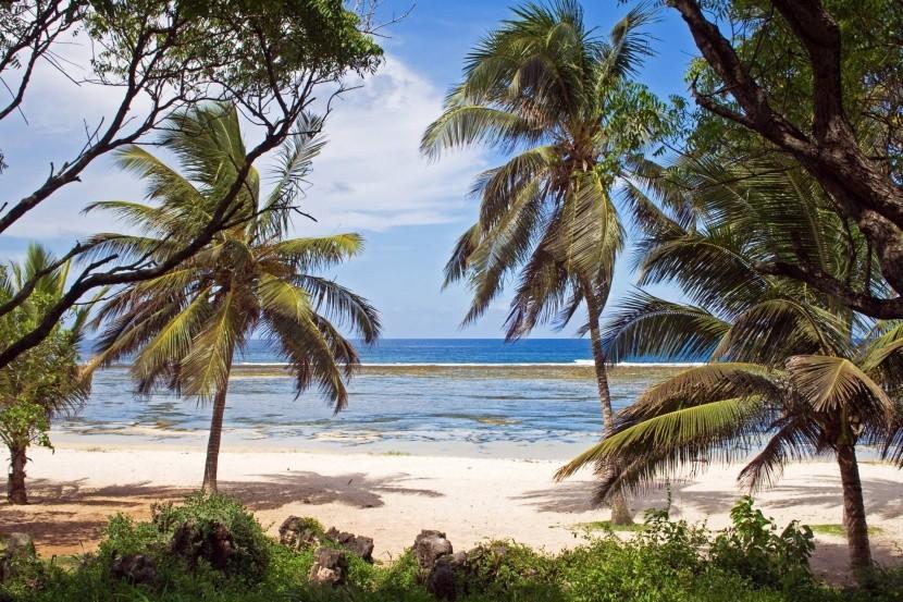 Pláž Tiwi, Keňa