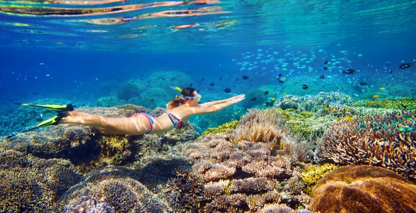 Plávanie medzi koralmi je úžasným zážitkom