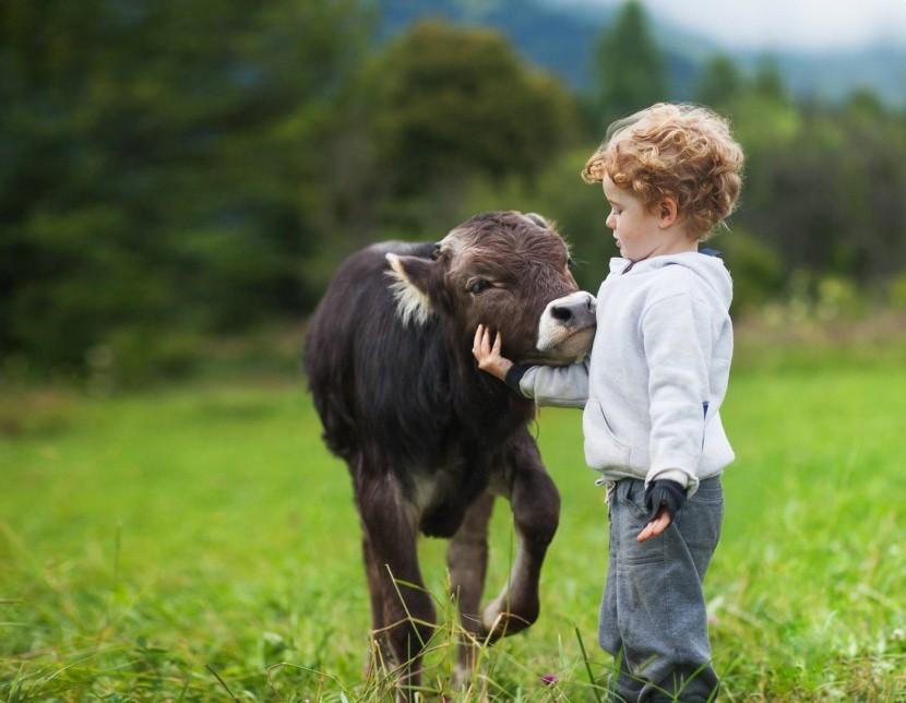 Vyskúšajte s ďeťmi pobyt na farme