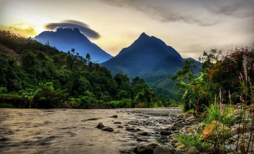 Príroda na Borneu