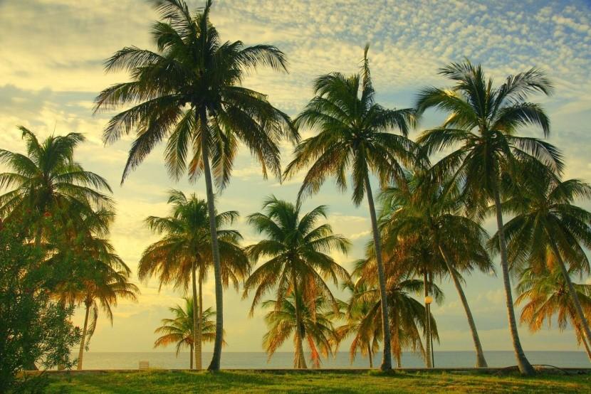 Pobrežie Kuby