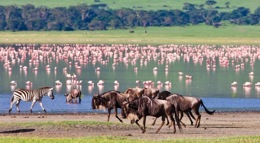 Kráter Ngorongoro v Tanzanii