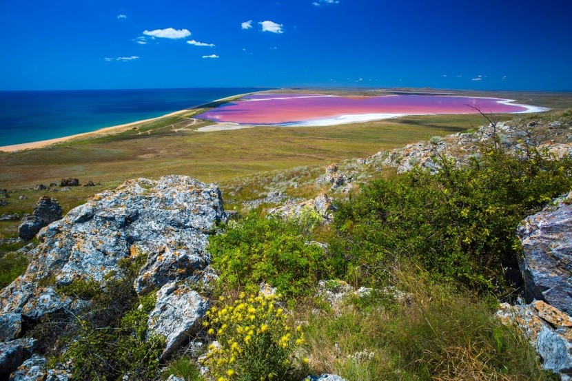 Ružové jazero Kojaš na Kryme