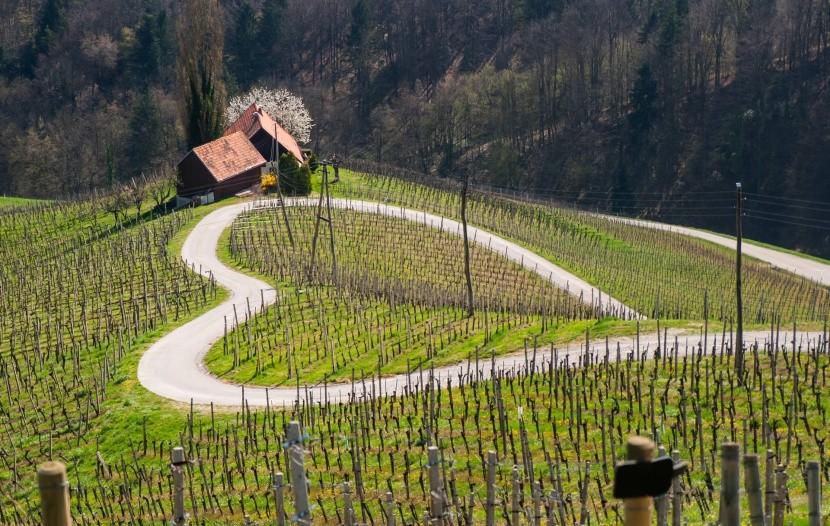 Cesta v tvare srdca v Slovinsku
