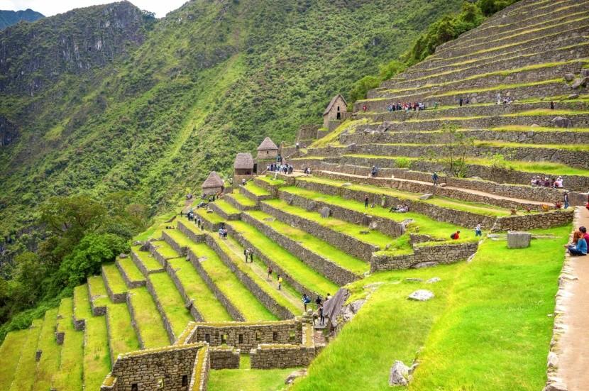 Terasy v Machu Picchu