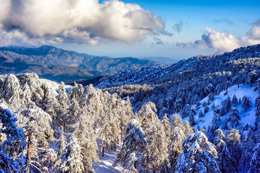 Pohorie Troodos v zime