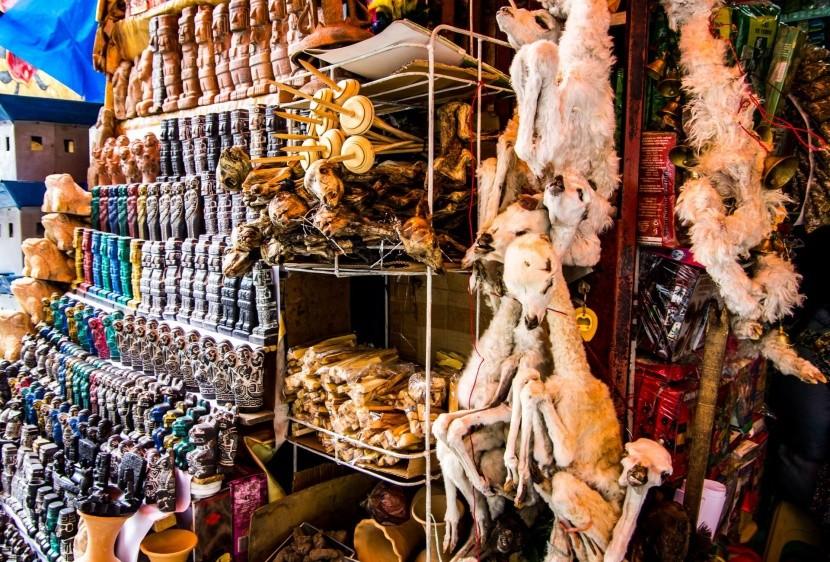 Čarodejnícky trh, La Paz
