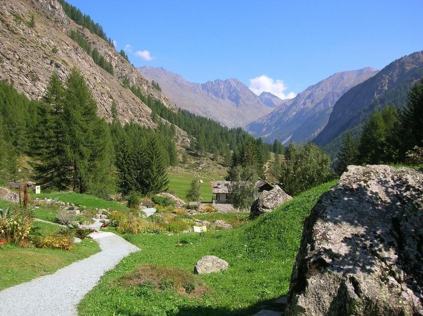 Giardino Alpino Paradisia