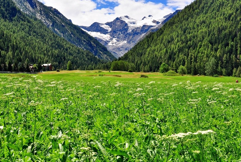 NP Gran Paradiso, Taliansko