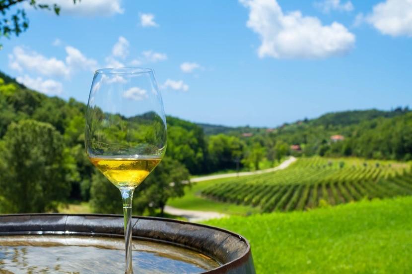 Chorvátske víno