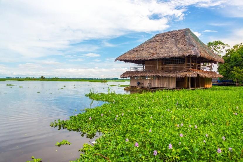 Amazonka, Peru