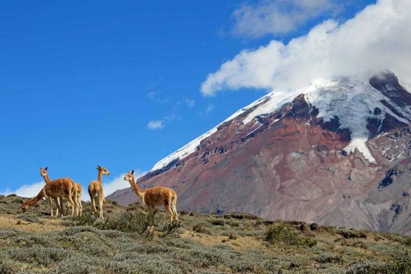 Ekvádorská príroda