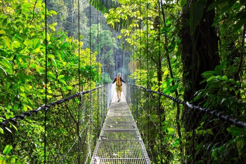 Cesta pralesom, Kostarika