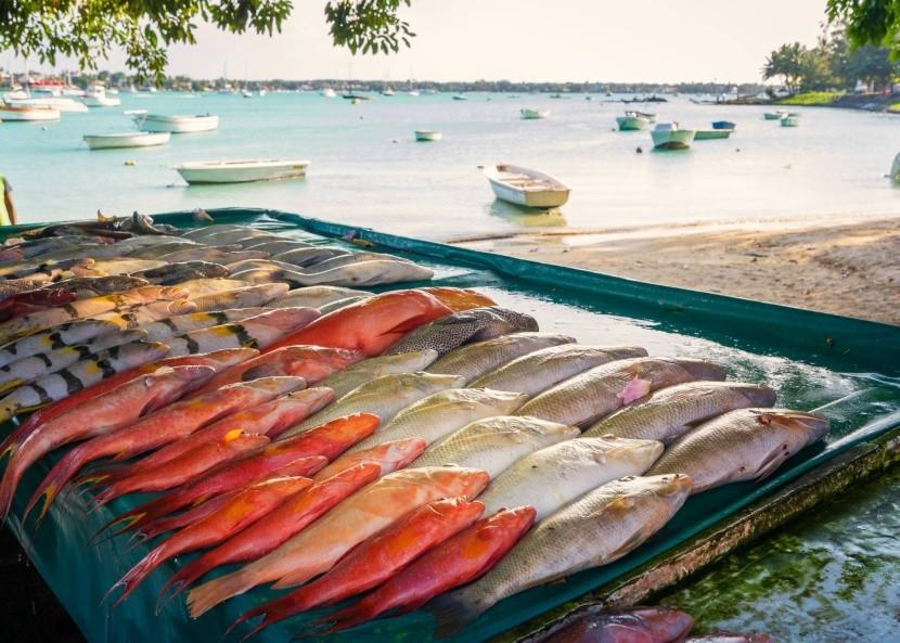 Rybí trh na pláži v Grand Baie