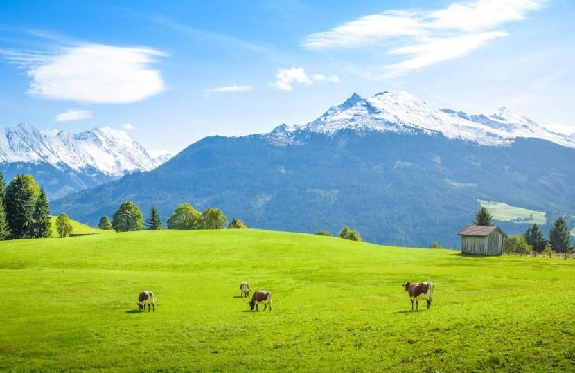 Rakúsko, Salzbursko