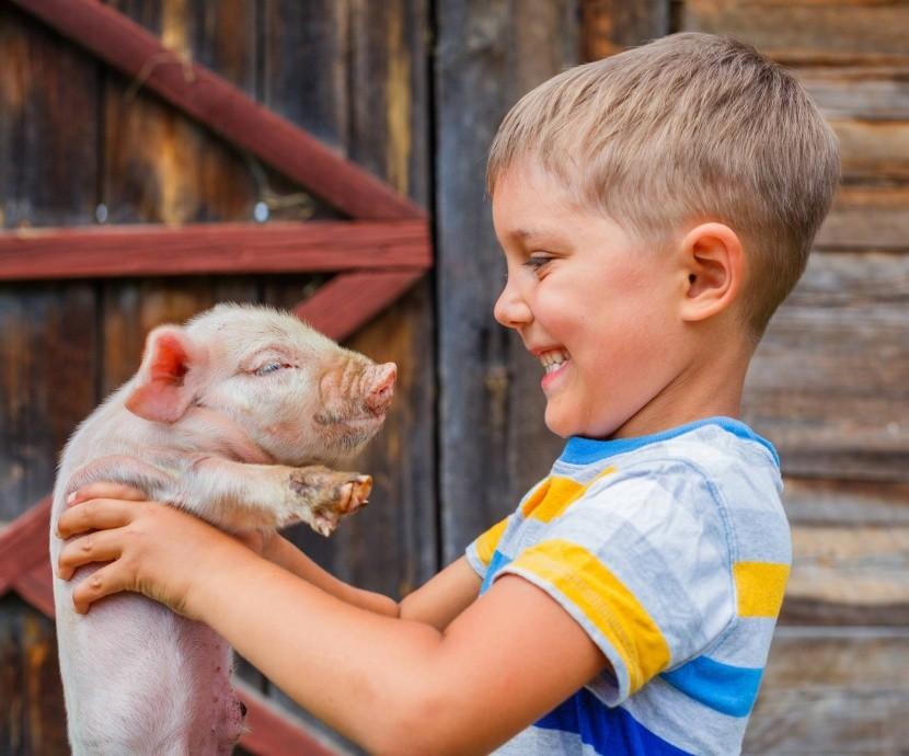 Deti agroturistiku milujú
