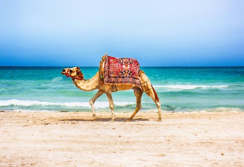 Najkrajšie tuniské pláže