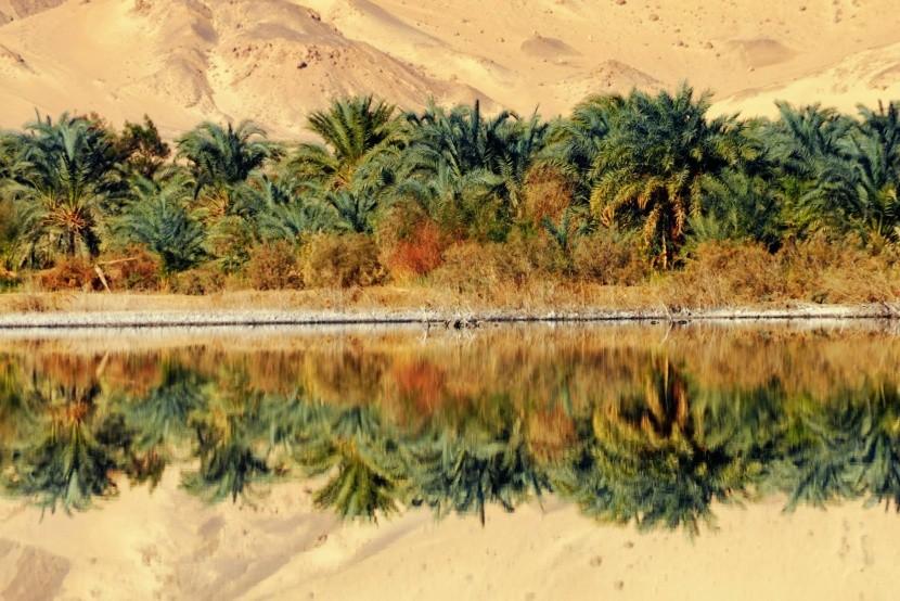 Oáza Farafra, Egypt