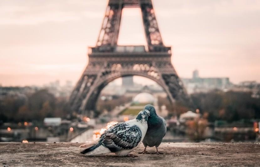 Zamilovanosť Eiffelovke sluší