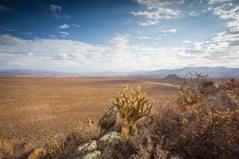 Tankwa Karoo, Južná Afrika
