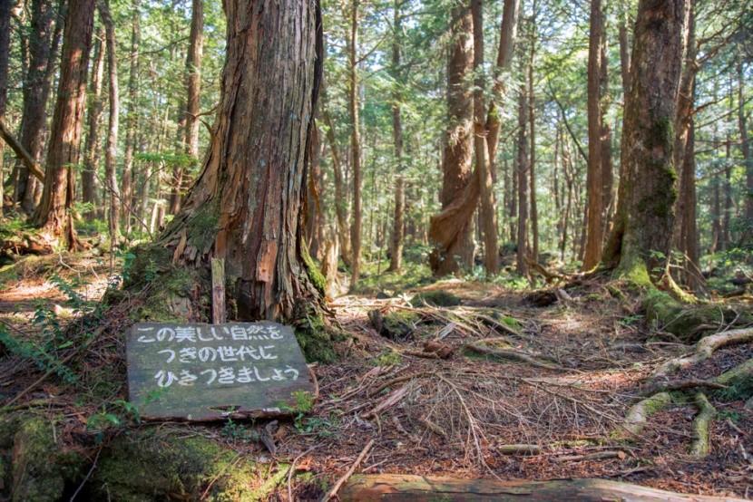 Les samovrahov v Japonsku