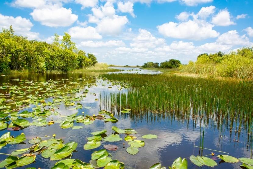 Národný park Everglades na Floride
