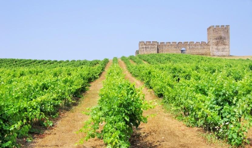 Najlahodnejšie portugalské vína pochádzajú z