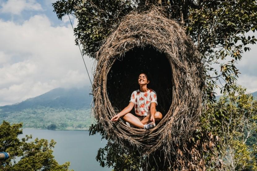 Meditácia vo vtáčom hniezde