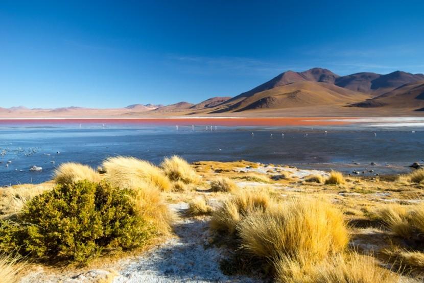 Krvavo červené jazero Laguna Colorada