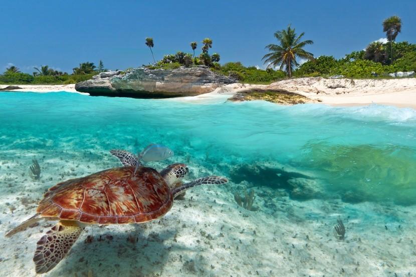 Exotická dovolenka v Mexiku